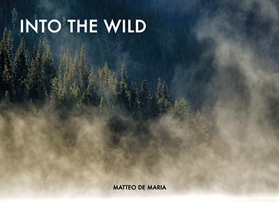 into the wild, libro matteo de maria