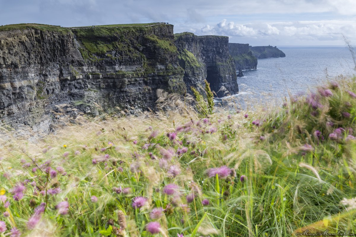 Cliffs Of Moher, foto dell'Irlanda